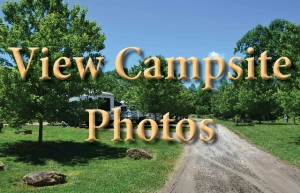 Campsitephotos_copy